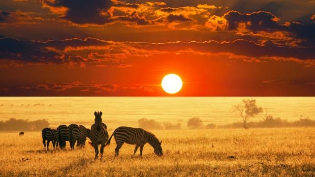 african-skyline